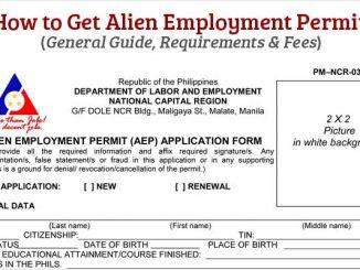 在菲律賓工作需要辦理的工作許可證類型